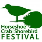 Horseshoe Crab & Shorebird Festival