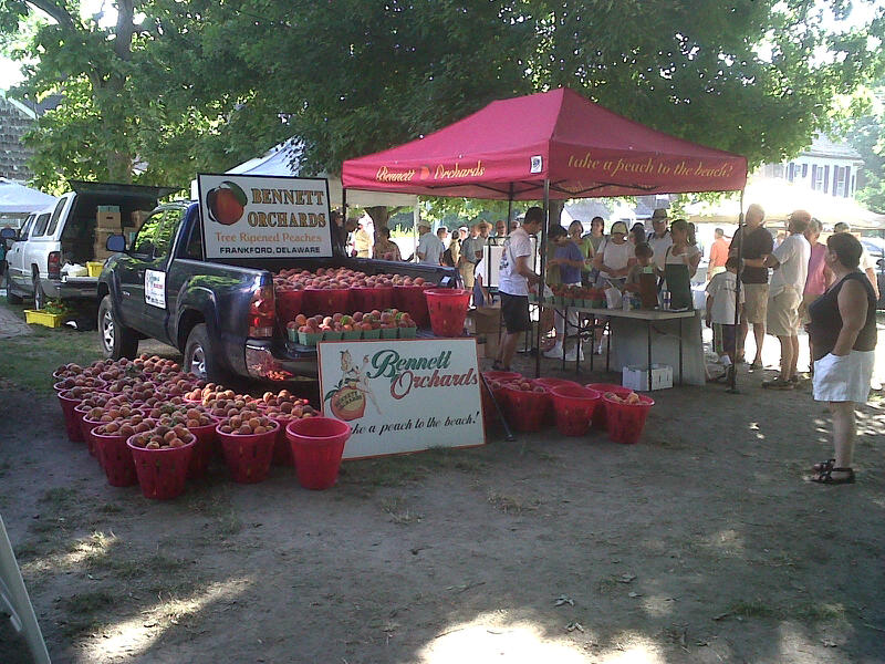 Peaches at the Lewes Farmers Market!