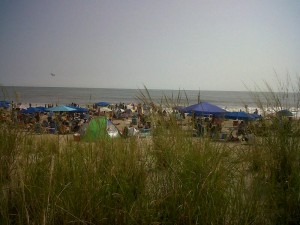 Beach goers enjoying the day on Rehoboth Beach