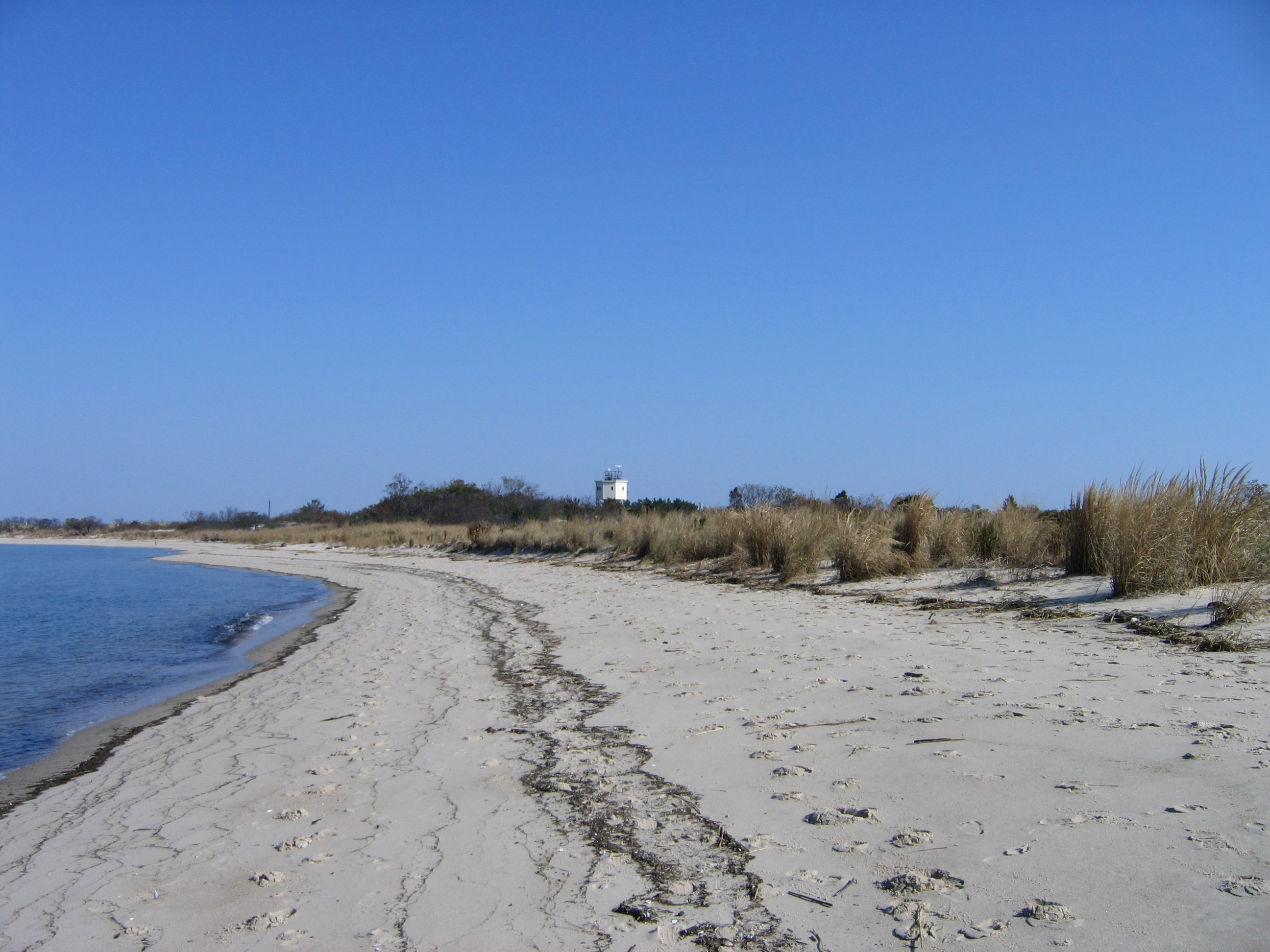 About cape henlopen state park in lewes delaware active for Fishing in delaware