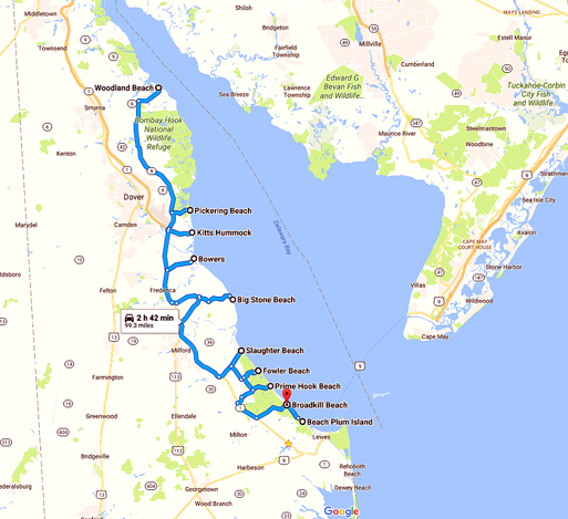 Delaware Beaches Map The Hidden Delaware Beaches Road Trip   Active Adults Delaware Blog