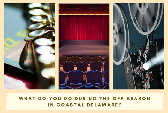what to do in coastal delaware during the off season