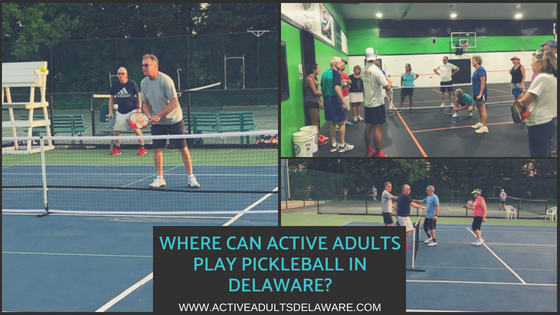 Active Adults playing pickleball in Delaware