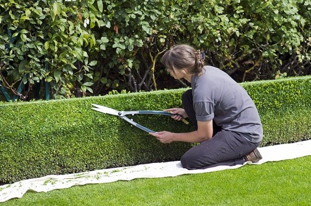 Paying attention to your home's curb appeal is the first step to making a good impression on buyers.